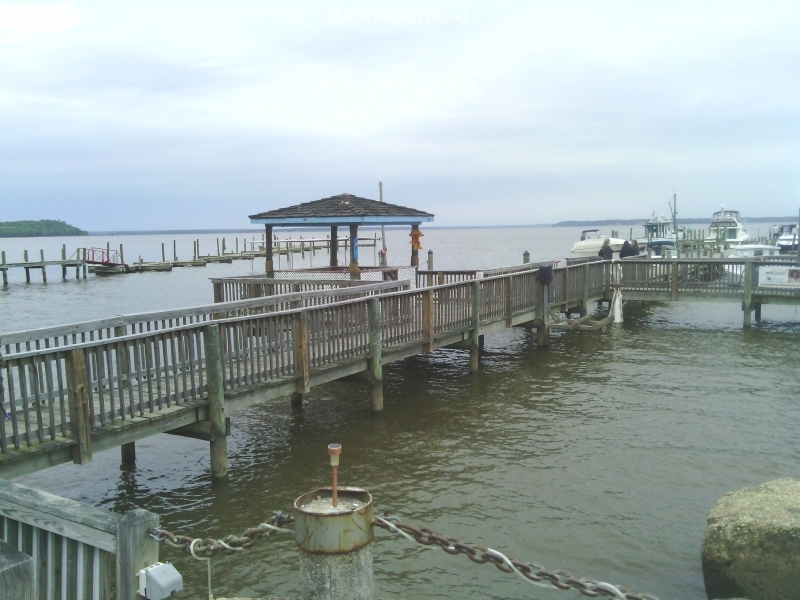 Tim's Rivershore