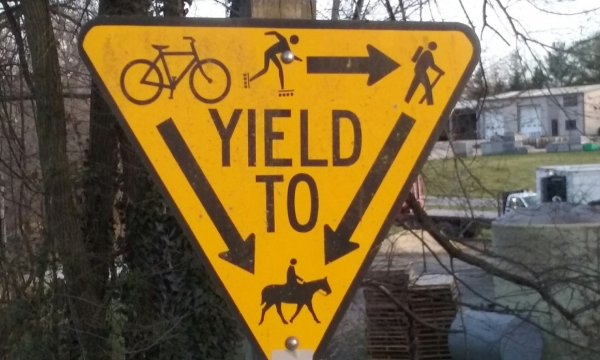 According to trail rules, horses have the right of way!