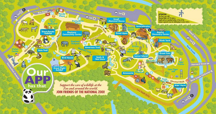The Smithsonian National Zoo What To Know Before You Go A