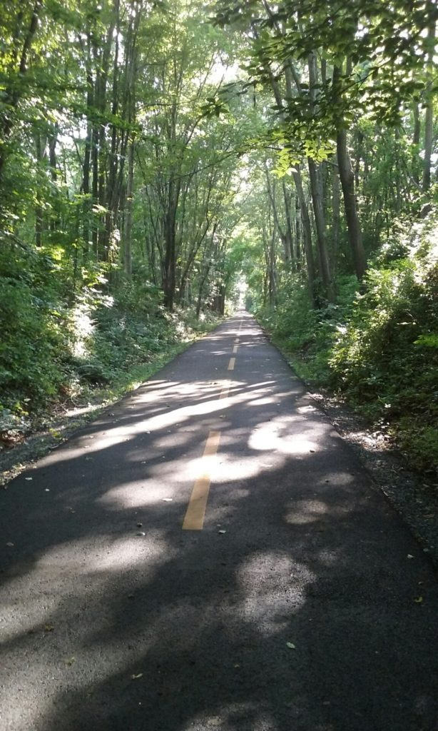 W&OD Bike Trail