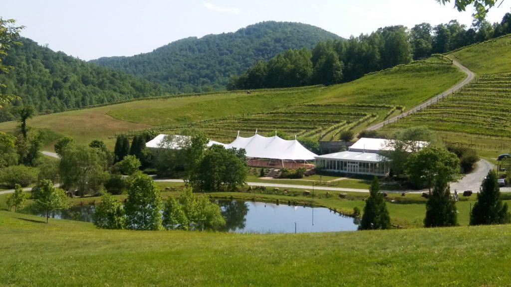 Delfosse Winery Vineyard