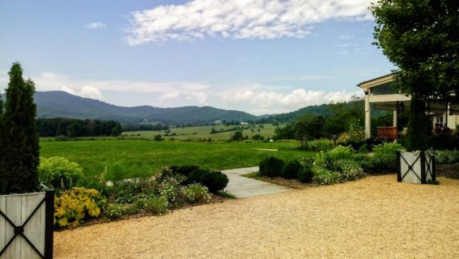 The stunning view from Pippin Hill Farm and Vineyard in North Garden, VA