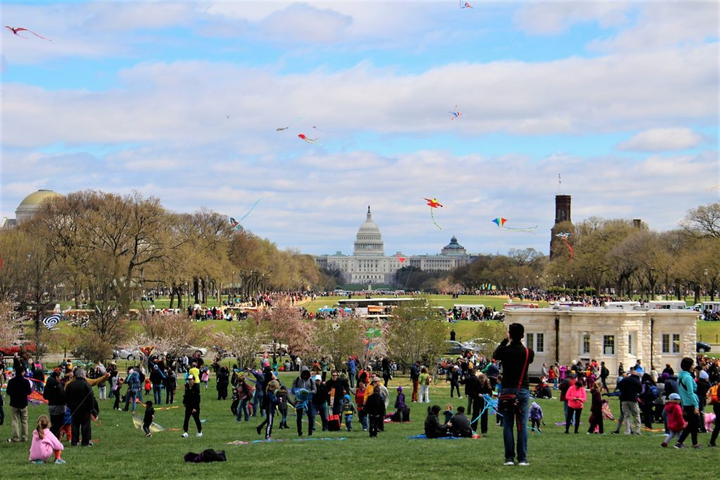 The Blossom Kite Festival on The National Mall