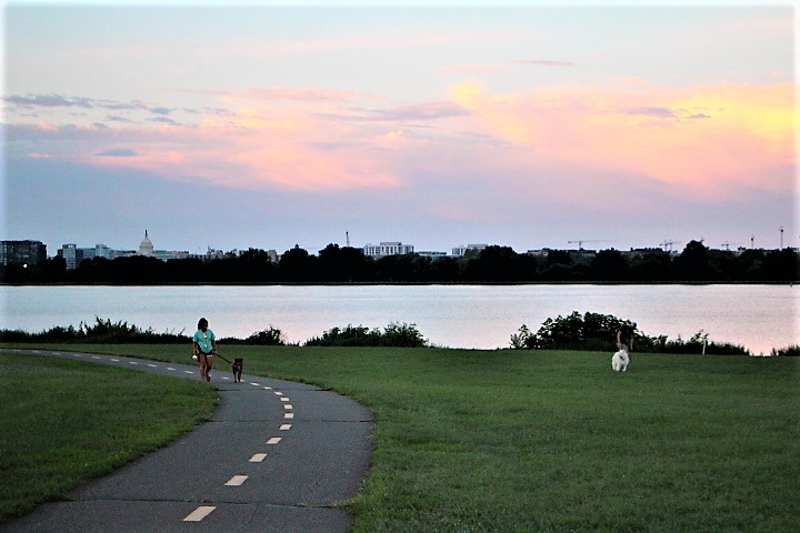 The Mount Vernon Trail at Gravelly Point offers a great view of downtown DC