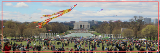 Fly High at the 2018 Blossom Kite Festival